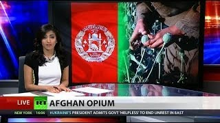 Opium production, addiction booming in Afghanistan