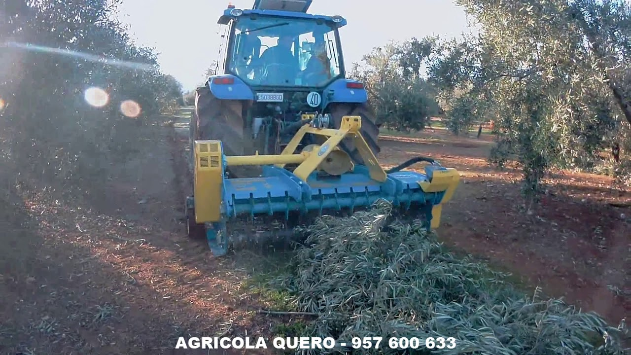Trituradora Reversible ZANON, TRK-2100 en ramas de olivar