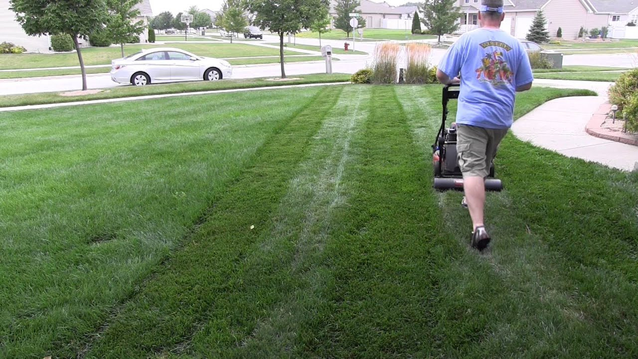 Inspirational Starting A Lawn Care Business for Dummies