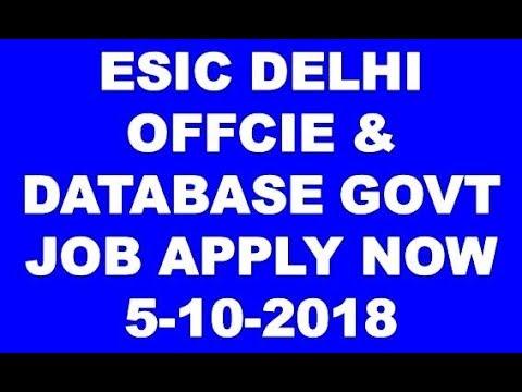 ESIC DELHI OFFICE SUITES & DATABASE EXPERIENCE GOVT JOB APPLY JOB 5-10-2018