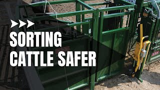 Cattle Sorting | Cattle Draft Module - Safer Way To Sort Cattle | Arrowquip