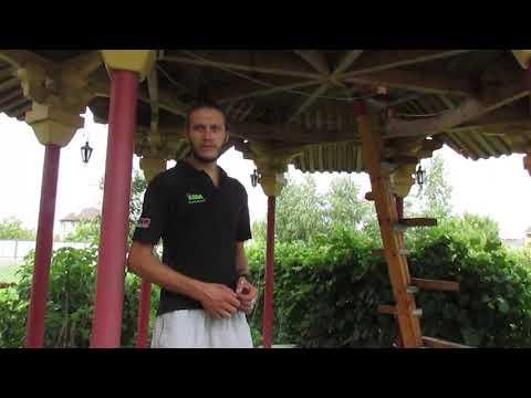 Погляд: Чернівецький архітектор у себе на подвір'ї збудував китайську альтанку