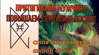 """ПРИТЯГИВАЕМ МУЖЧИН!!/став """"Мухоловка"""" от автора DIVINA/ + общий расклад"""