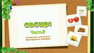 Развивающие уроки по методике Домана для детей от 6 месяцев - Овощи часть 2