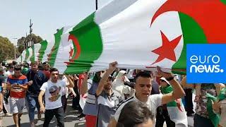 الجزائر: ارتياح واضح في صفوف المتظاهرين لمحاسبة المسؤولين الكبار في الجمعة الـ 17…