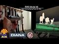 Diana RWS Model 48 Sidelever Airgun