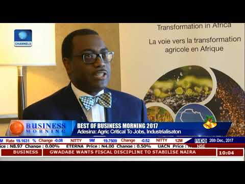 Africa Will Determine Future Of World Food - AfDB President |Business Morning|