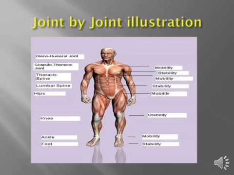 Joint by joint approach