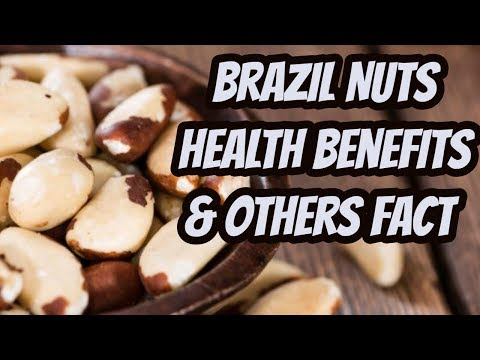 Brazil Nuts Health Benefits । Nutrition value। Dangerous Side Effects। Facts।