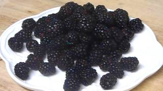"""""""Blackberries Fruit  Benefits"""" """"Benefits of Blackberries for Skin"""" """"Health Benefits of Blackberries"""" Thumbnail"""
