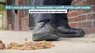 Pet Waste and Water Quality Short