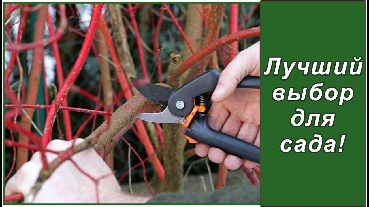 Секаторы садовые  как выбрать?  Садовые  инструменты: секаторы Fiskars для сада малого ухода.