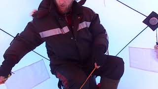 Зимова намет Пінгвін Містер Фішер 170