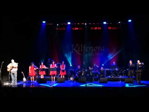Clare to Here - Don Stiffe & The Kilfenora