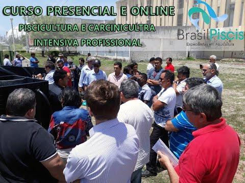 Cursos Piscicultura E Carcinicultura Profissional Brasil Piscis