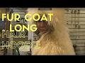 Fur Coat Antique-long fur-lambs wool-funny hood looks like a bird-strathroy antique mall