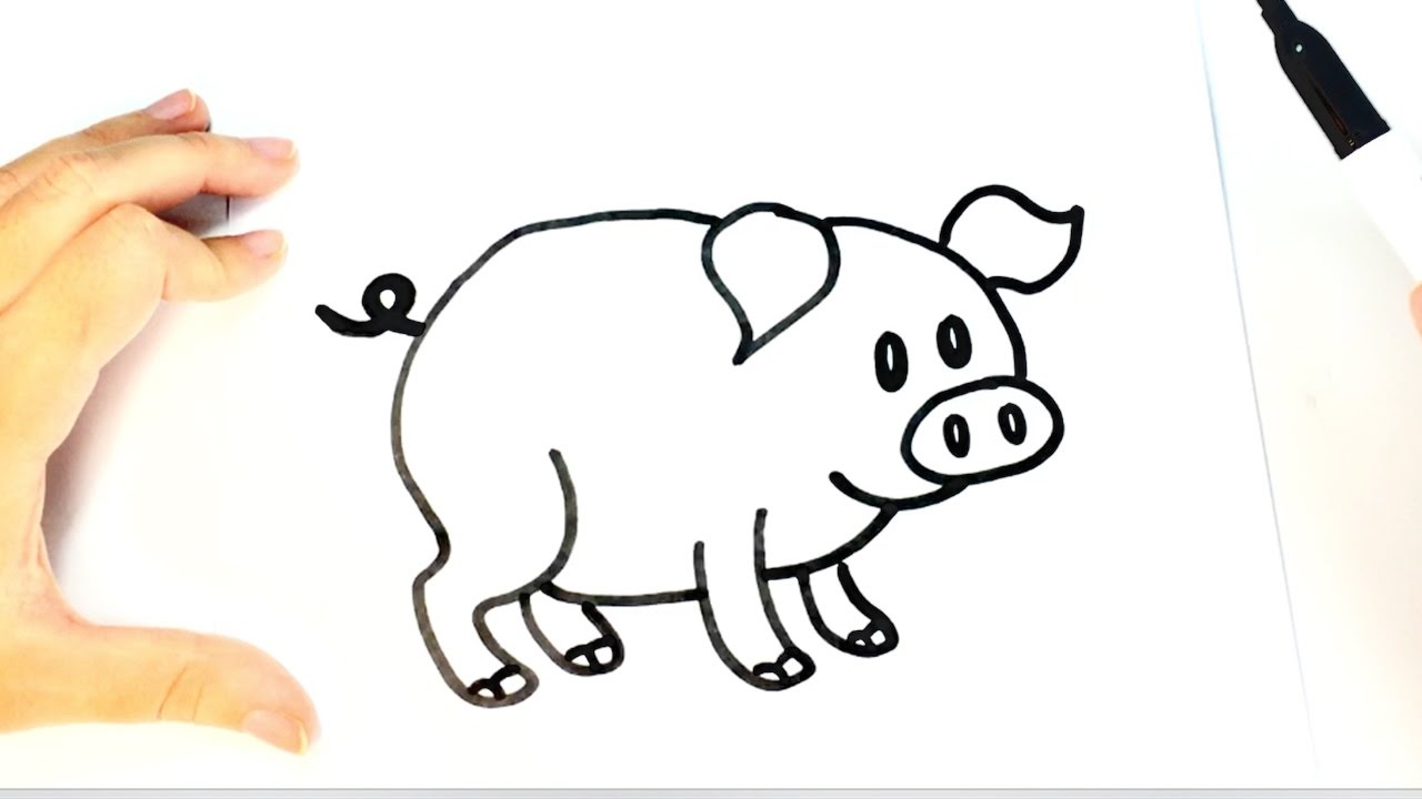 how to draw a pig for kids pig drawing lesson youtube