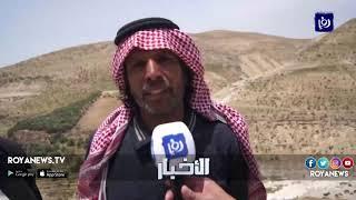 """بعد تقرير لـ رؤيا.. """"الزراعة"""" تطلع على الأوضاع في وادي الوالة - (26-4-2016)"""