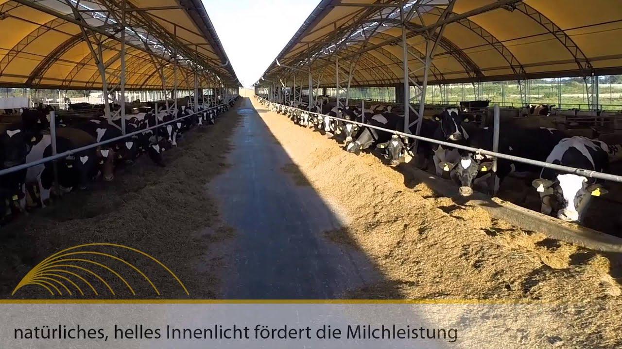 Prächtig Hallen für die Milchviehhaltung - YouTube @UX_88