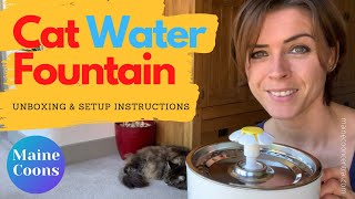 Maine Coon Water Fountain: Unboxing And Setup