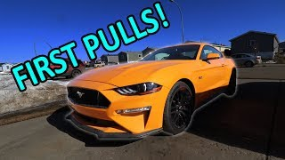 Whipple Mustang Build - Part 3