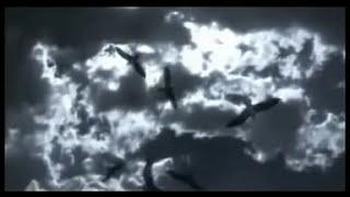 ต่างคนต่างไป - อาร์ อาณัตพล 【OFFICIAL MV】