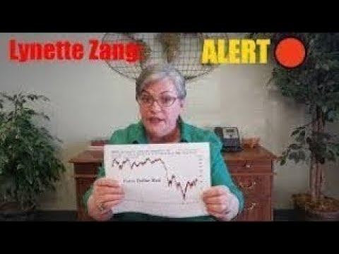 Now Did the ENOCOMIC COLLAPSE Begin Today California Already IN CRASH Lynette Zang