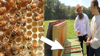 opened-up-a-horizontal-bee-hive-and-found-this