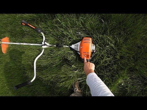 Газон без ухода / Тестирую смеси газонных трав