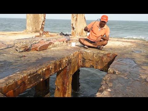 Catching Sea Saltwater Catfish