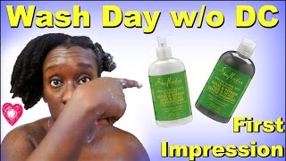 Simple Wash Day Routine on 4c Hair | SM African Water Mint First Impression