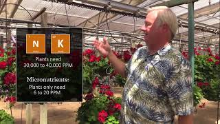 Plant Physiology for Growers, Part 4: Plant Nutrient Absorption