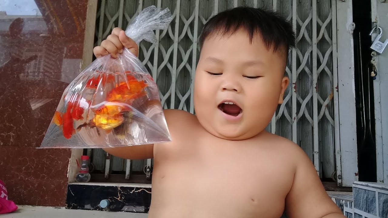 Đồ chơi trẻ em bé pin nuôi cá 3 đuôi ❤ PinPin TV ❤ Baby toys feed fish