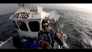 Мы на морской рыбалке. Большей улов.(Ставьте класс и подписывайтесь на канал )) Одноклассники: http://ok.ru/profile/560314430906 VKонтактe: https://vk.com/id20959766 https://www.fa..., 2016-06-18T18:30:16.000Z)