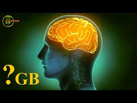 Какой объем памяти мозга человека в GB Гигабайтах? | Разгадка тайны мозга