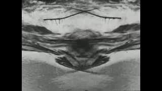 Del tuffarsi e dell'annegarsi, di Paolo Gioli - Muto