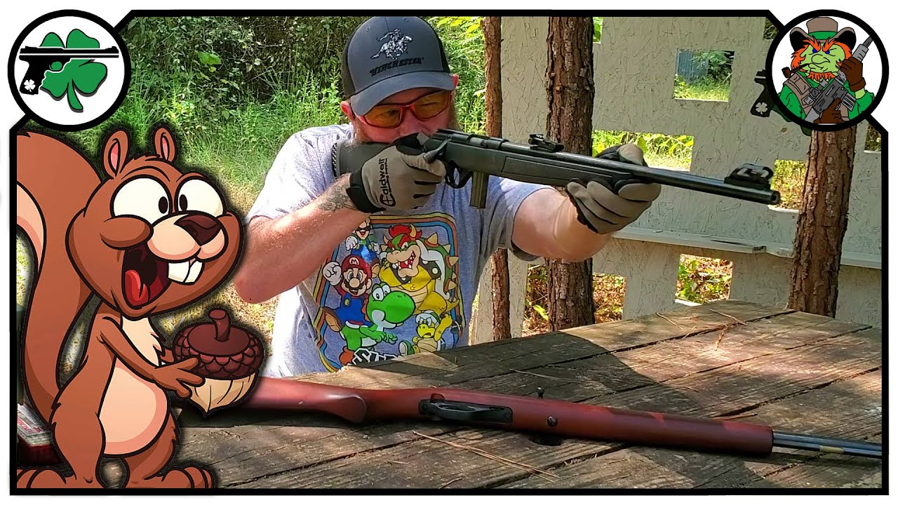Squirrel Hunting On A Budget 22 Rifle Options