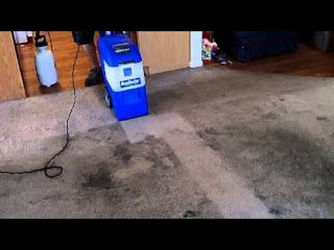 Rug Doctor X 3 Cleaning A Bad Rental Carpet Youtube