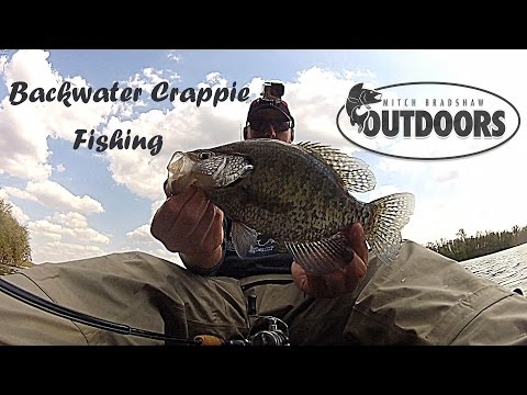 Minnesota Backwater Crappie Fishing