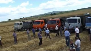 Русская Ивановка в Азербайджане - Уборка зерна
