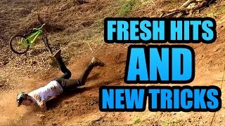 FRESH HITS AND NEW TRICKS