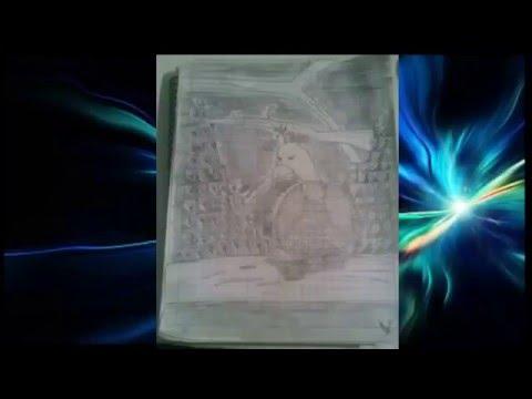 Historia-Las plumas del pavo real.