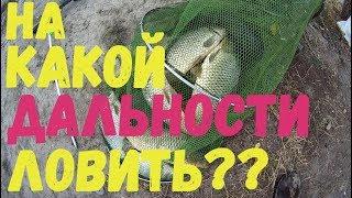 На какой дальности ловить? Рыбалка на Днестре.