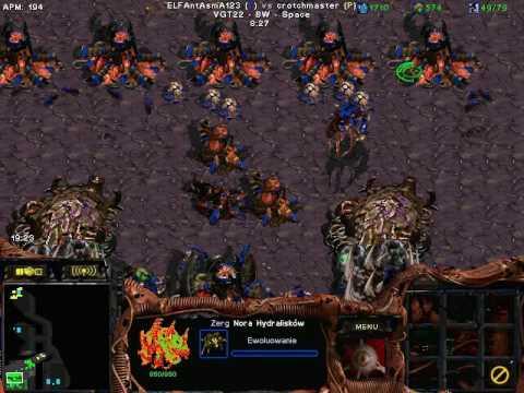 Download starcraft brood war 1 vs 1 fastest (zerg vs protoss)