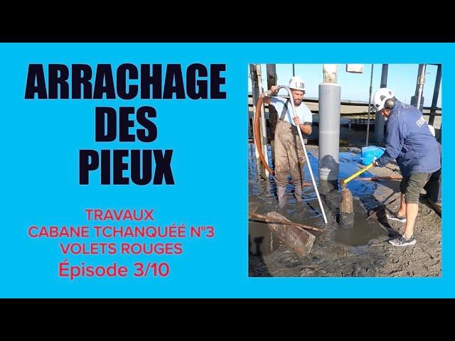 #3 Fin des travaux de Réfection de la Cabane Tchanquée n°3 aux Volets Rouges Île aux Oiseaux BFMTV