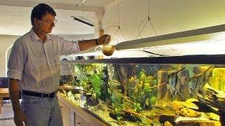 Ernst-Otto von Drachenfels, Aquarianer mit Leidenschaft