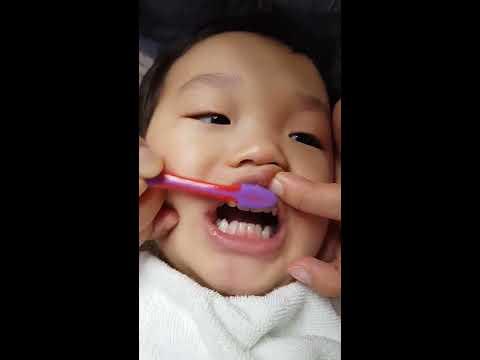 우리 아이 이닦기, 유아 치실 사용법 (feat. 소아치과의사)