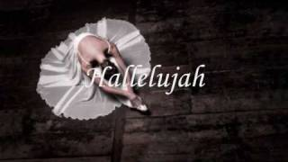 Hallelujah - Rufus Wainwright (karaoke version)