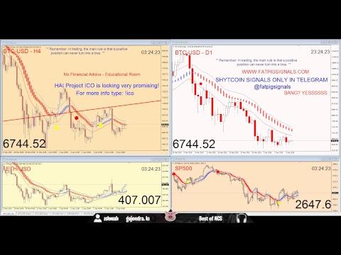 Bitcoin Free Live Signals Chat 24-7 Fat Pig  ETH LTC XRP BCH ADA XLM NEO EOS DASH NEM IOTA TRON VEN