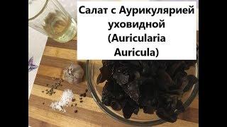 ДРЕВЕСНЫЙ ГРИБ МУЕР: приготовление салата с  Аурикулярией уховидной